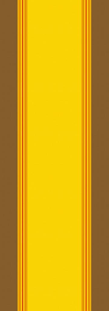 CIBOULETTE SOLEIL