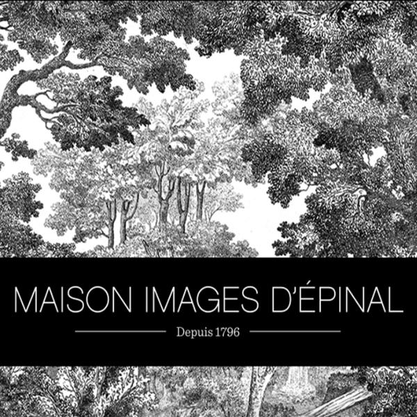 LOGO MAISON IMAGES D'EPINAL